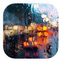 Coques gouttes de pluie